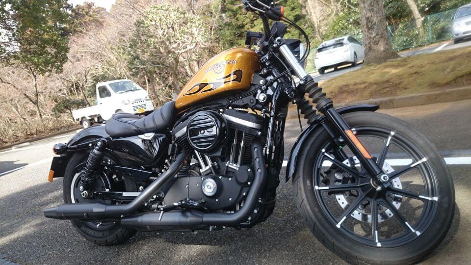 Harley-Davidson 883N IRON